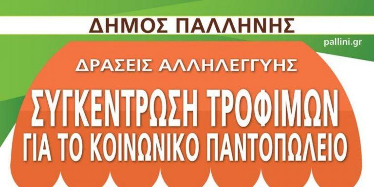 Read more about the article Συγκέντρωση τροφίμων για το κοινωνικό παντοπωλείο Δήμου Παλλήνης